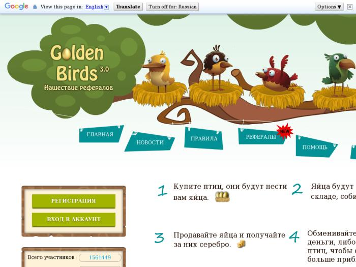 Golden-birds